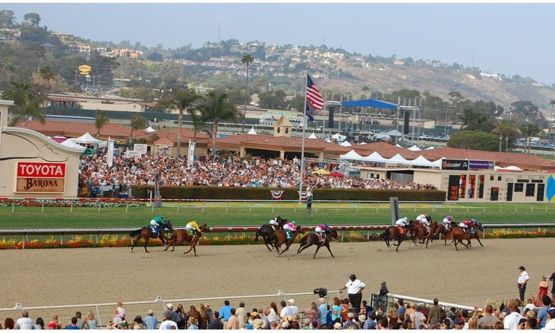 horses-on-track-del-mar-track