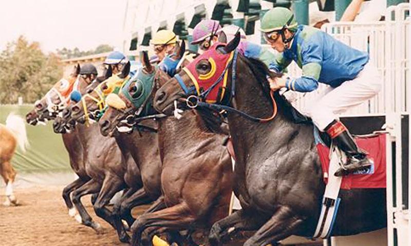 vintage-del-mar-race