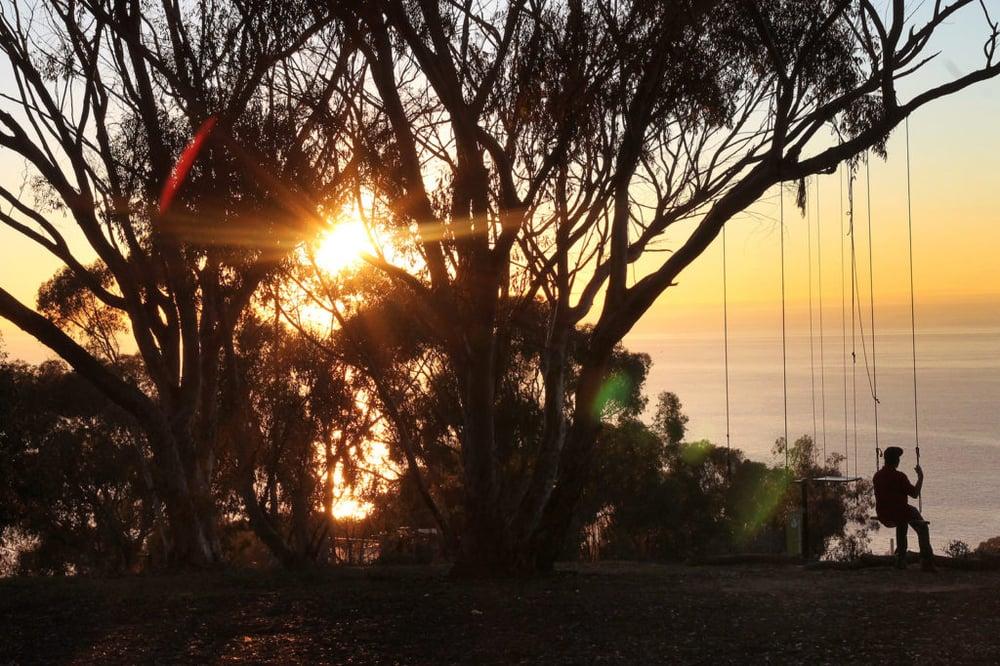 Hidden Swings - La Jolla