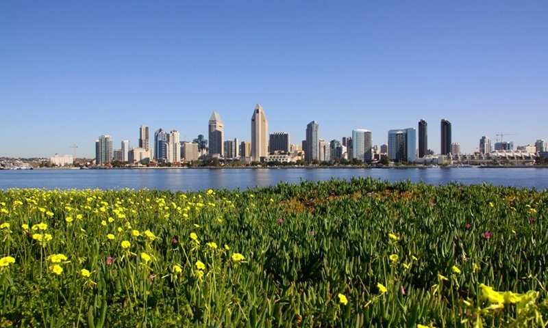 Skyline View of Centennial Park in Coronado