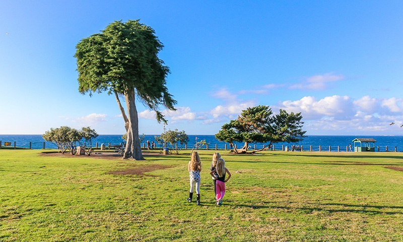 Children Near the Dr. Seuss Tree in La Jolla