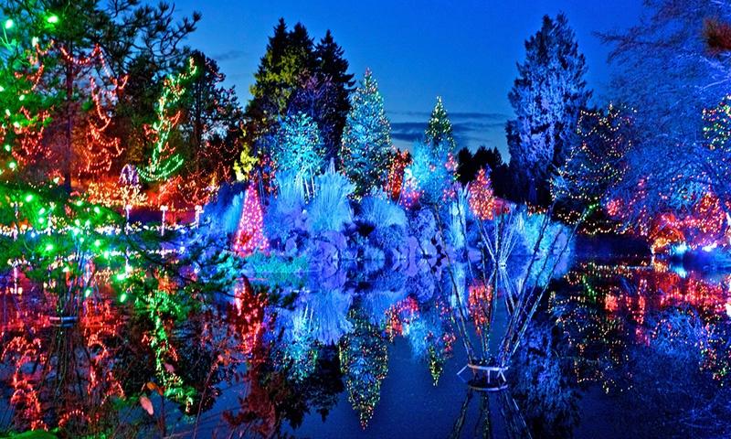 festival-ligts-vandusen-botanical-vancouver