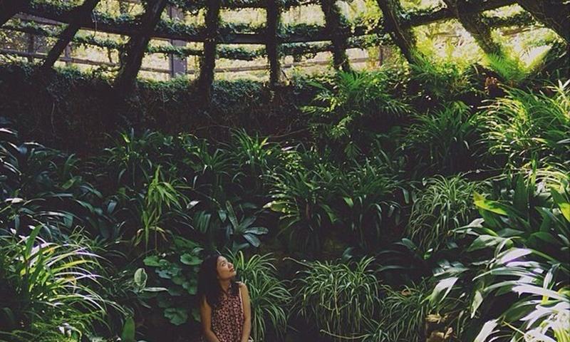 self-realization-garden