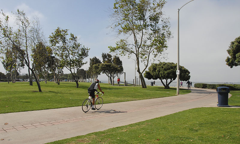 transport-bicycle