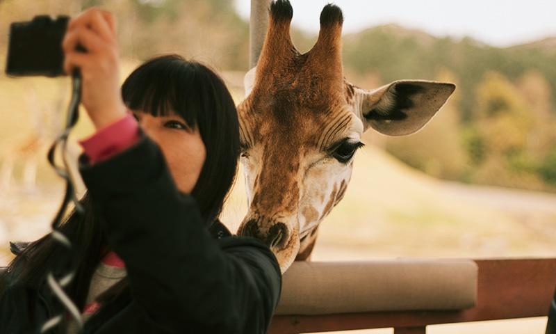 escondido-zoo-safari-park.jpg