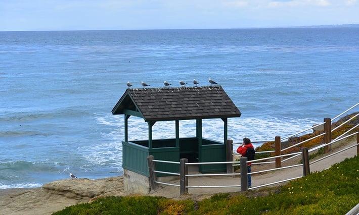 The_beach_of_San_Diego_-_Google_Maps.jpg