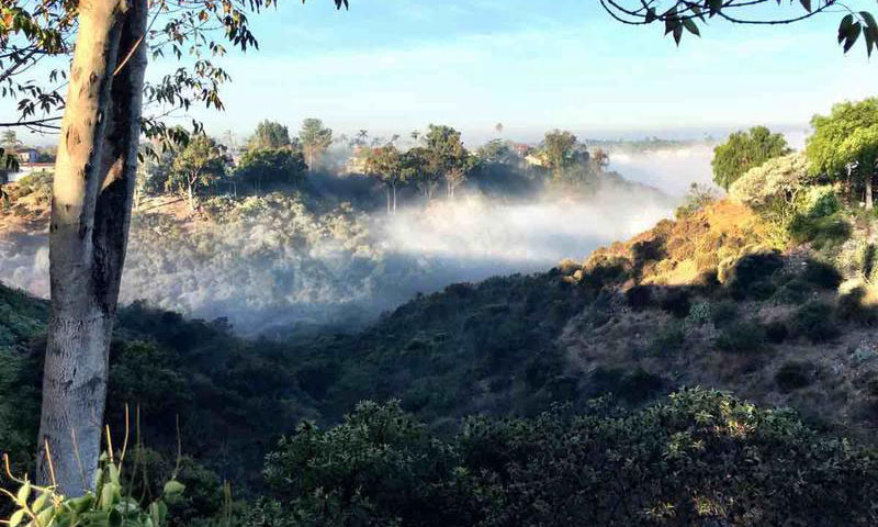 hills-view-fog